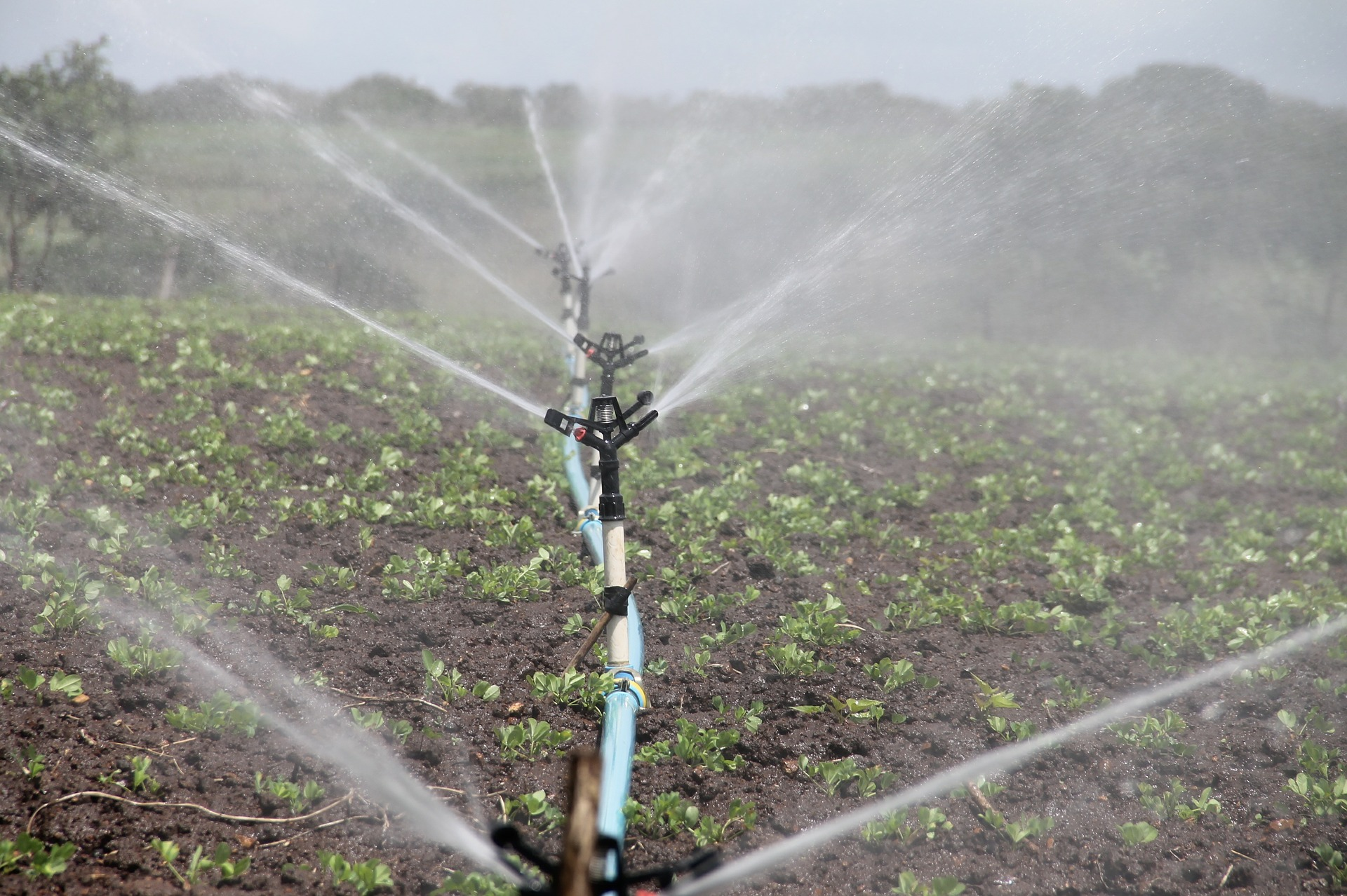 smartization of Irrigation